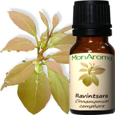 Le pack d 39 huiles contre la sinusite - Sinusite huile essentielle ravintsara ...